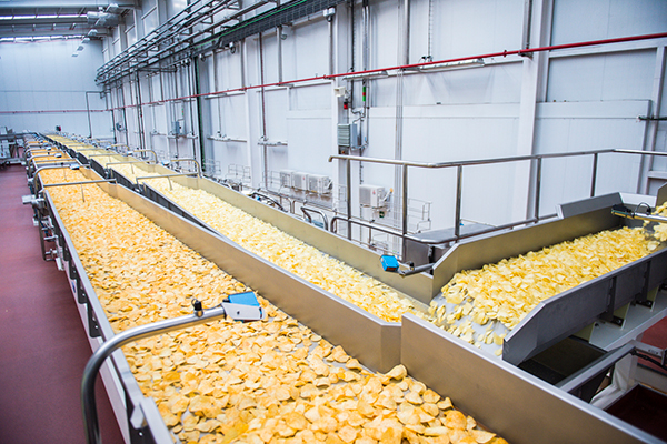 Producción de patatas