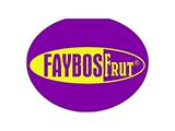 Faybos Boskaki