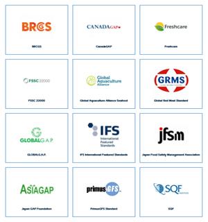 Logos página IFS